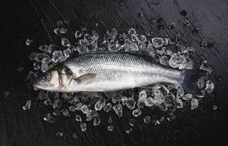 One fresh seabass fish on ice on black stone background, top view with copy space