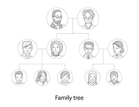 genealogical tree: Family tree chart, genealogical tree, family portraits thin line style vector