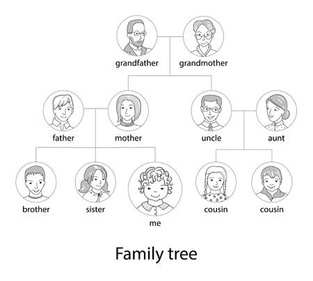 Carta del árbol de la familia delgada línea del vector del estilo Foto de archivo - 69224527