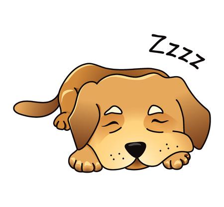 labrador: Cute dog sleeping.