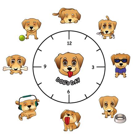 Perros actividades diarias divertidas infografías