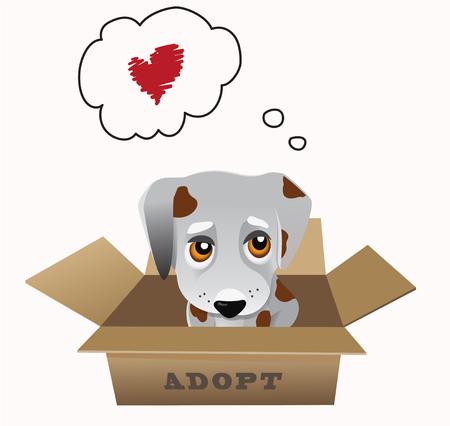begging: Pet adoption vector concept