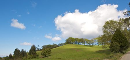 ambiente: Spring landscape - green field trees and the blue sky with clouds Stock Photo