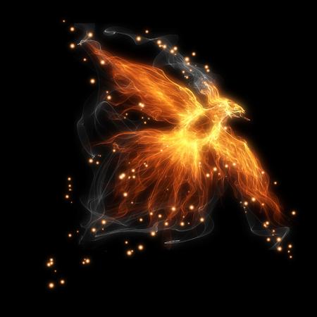burning fiery bird flies on a black background