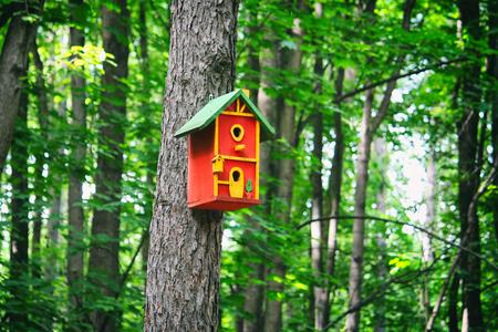 Rood vogelhuis op een boom in het bos Stockfoto