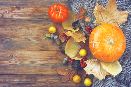 autumn theme background, pumpkins, dry leaves, rowan berries, chokeberry, acorn, plum on an old wooden table, top view