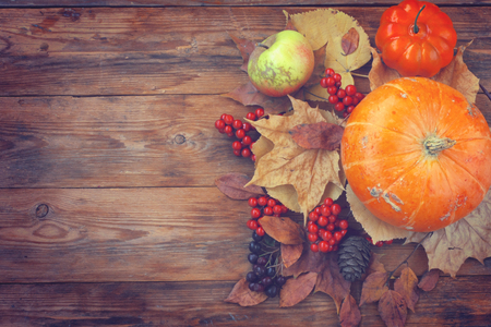 autumn theme background, pumpkins, dry leaves, berries, old bag on a wooden table, top view Banco de Imagens