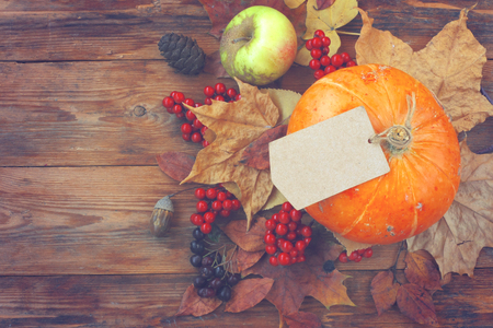 autumn theme background, pumpkin, empty paper tag, dry leaves, berries, old bag on wooden table, top view