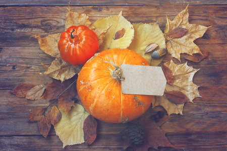 autumn theme background, pumpkin, paper label, dry leaves, old bag on  wooden table, top view