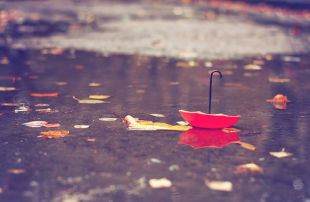 toy red umbrella lies in dirty puddle with leaves, autumn landscape in city park, rainy weather, selective focus