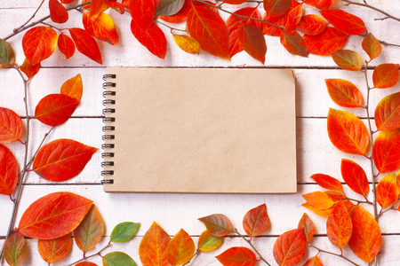 autumn background with branches and colorful autumnal leaves, notebook for notes on white wooden table, top view, fall concept