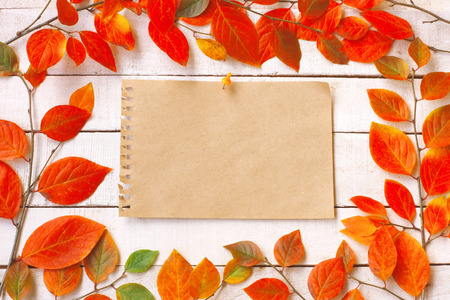 autumn background with branches and colorful autumnal leaves, empty paper sheet with button on white wooden table