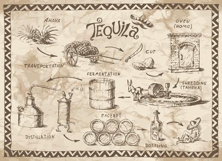 burro: Esquema de producción de tequila en el viejo fondo de papel Vectores