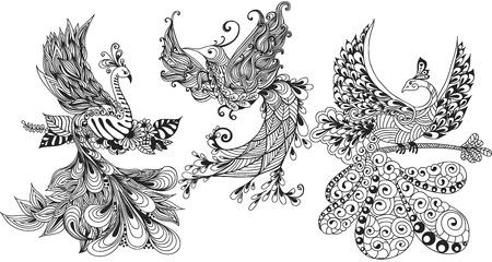 Illustration of three Phoenix Birds.