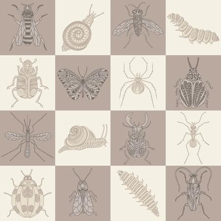 stag beetle: Hand drawn beetles set.