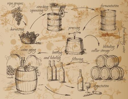 bottling: Wine production scheme. How to make wine. General principles. Vector illustration.