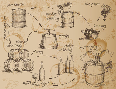 De productie van wijn-regeling. Hoe om wijn te maken. Algemene principes. Vector illustratie. Stock Illustratie