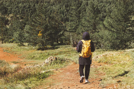 A man with a yellow backpack goes hiking in the national evergreen park. Travel light.