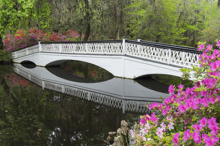 flanked: A long white bridge, flanked by blooming azaleas, crosses over a garden pond on the grounds of a plantation in the deep south of the United States