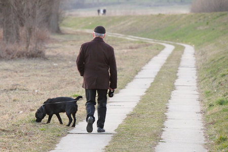 An elderly man in demi-season clothes is walking in the park with his black labrador dog. Morning activity of city residents and pet care. Men's fashion in the English style. Calm old age in the park.