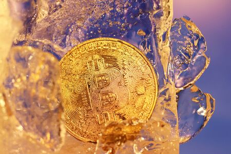 A bitcoin gold coin frozen in ice covered with drops of moisture iridescent in the rays of light. The freezing of financial assets. Fall and growth of online business. Cryptocurrency rate.