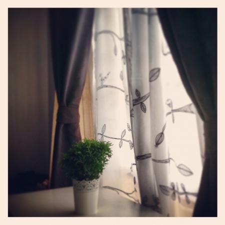 interior: Calmness indoor by the window Stock Photo