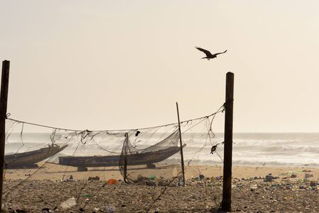 Raven flying over St Louis beach