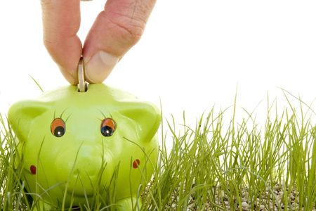 geld besparen op een piggy-bank op het gras geïsoleerd op een witte achtergrond