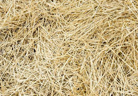 hay bales: straw background Stock Photo