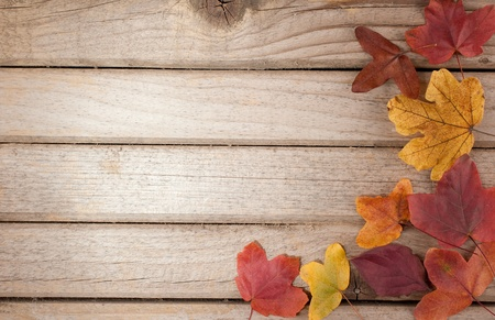 Wood background with autumn leaves photo