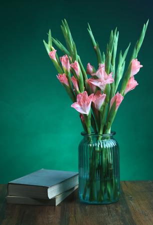 gladiolus: Gladiolus