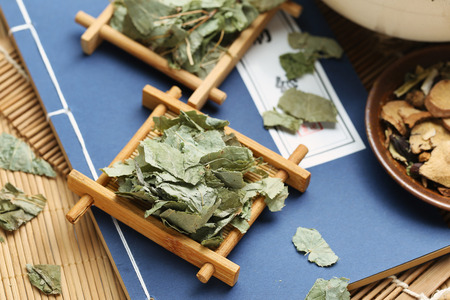 De traditionele Chinese geneeskunde Herba Epimedii Stockfoto