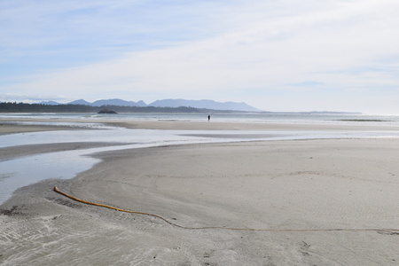 vancouver island: Beautiful beach on Vancouver Island Stock Photo