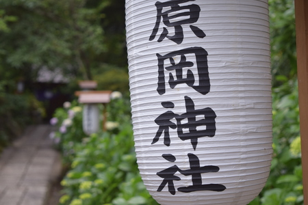 paper lantern: Paper lantern in Japanese temple Editorial