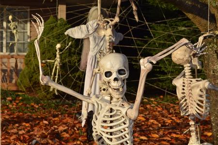 porch scene: Halloween skeleton