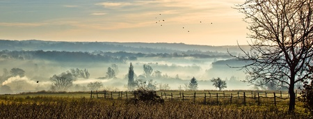 Sleepy hollow - mystical valley in fog with dark birds flying - panoramic Stock Photo - 10600388