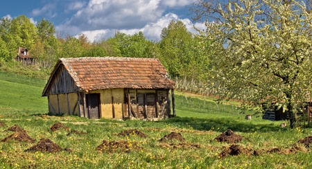 Springtime view on old traditional cottage made of wood and mud photo