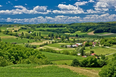 Beautiful green scenery landscape in spring time, village of Zaistovec, Croatia