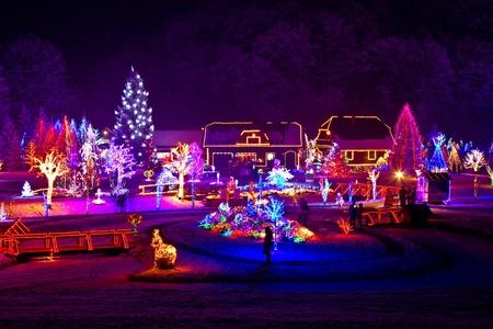 christmas lights: Fantasia natalizia - alberi e le case a luci accese bella notte d'inverno nevoso