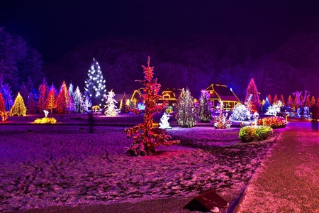 Christmas lights in town park - fantasy colors, Cazma, Croatia