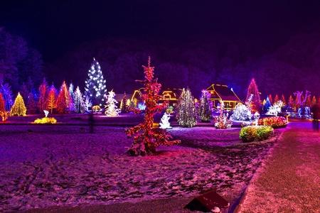 Christmas lights in town park - fantasy colors, Cazma, Croatia