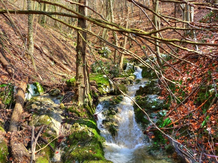 kalnik: Late winter beautiful mountain creek colorful nature, Kalnik, Croatia