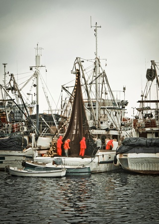 Fisherman crew fixing nets on fishing boat, Zadar, Croatia photo