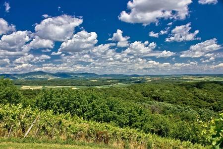 Beautiful green scenery landscape in spring time under blue cloudy sky, Prigorje, Croatia Stock Photo - 11475003