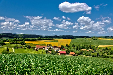 Beautiful green village scenery landscape in spring time, Zaistovec, Croatia