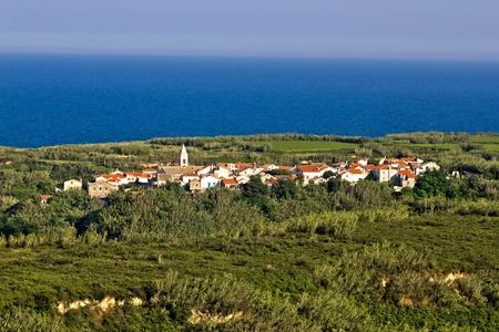 Adriatic Island o Susak bamboo and cane jungle village, Croatia Stock Photo - 11475012