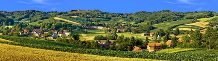 Green landscape village scenery, with corn and hay fields Stock Photo