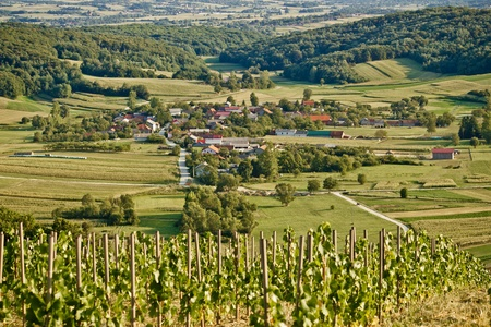 kalnik: Village in green natural scenery under vineyard hill, Kalnik, Croatia Stock Photo