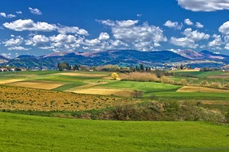 Beautiful green landscape under blue sky, Prigorje, Croatia Stock Photo - 13220146