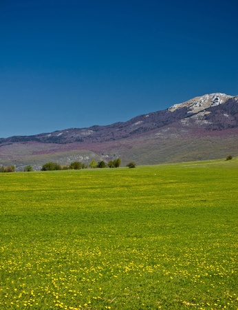 Green landscape under Licka Pljesivica mountain, Lika, Croatia photo